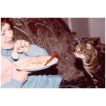 The first cat we were adopted by, - Sid, - liked Cucumber!